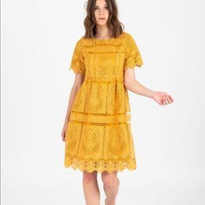 Dresses & Skirts - Chenoa Lace detail dress